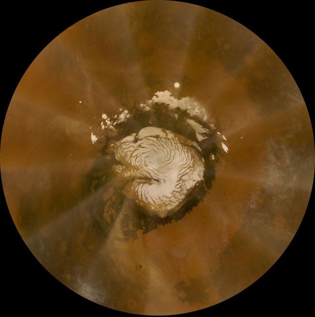 Phoenix Lander Survives Martian Dust Storm