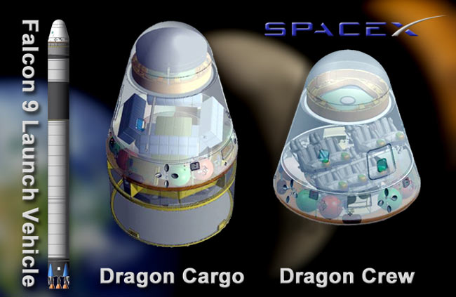 Dragon Crew and Cargo Capsules