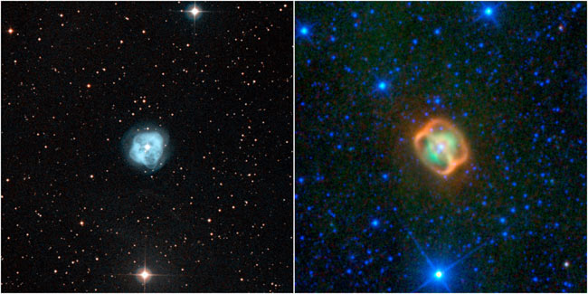 Photo of Dying Stars Looks Like Cosmic Jellyfish With Rings