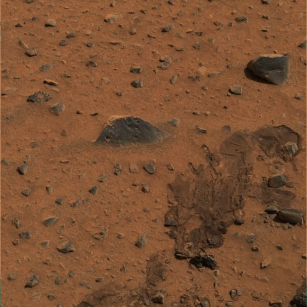 NASA Scientist Sees Possible Mat of Martian Microbes