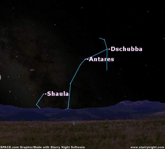 Shaula: The Sting of Scorpius