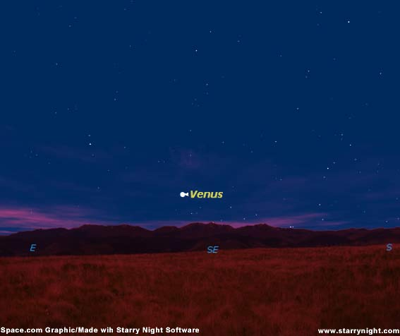 Venus is Back: Spot the Early Morning Beacon