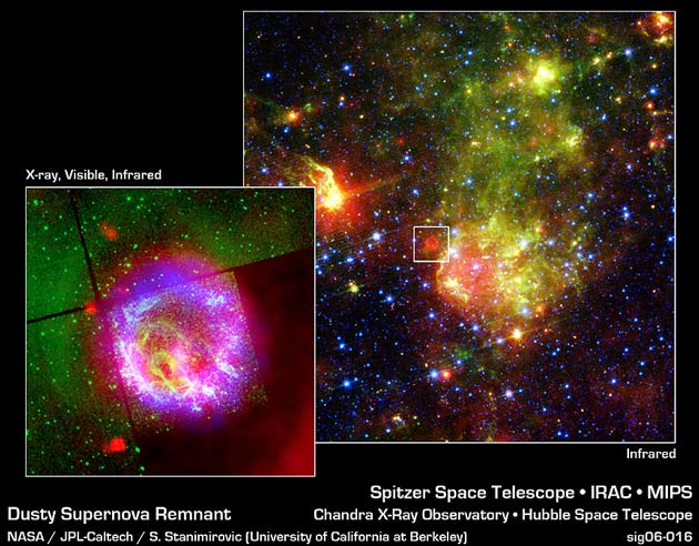 Explosive Debate: Supernova Dust Lost and Found