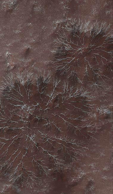 Strange Shapes Seen on Mars