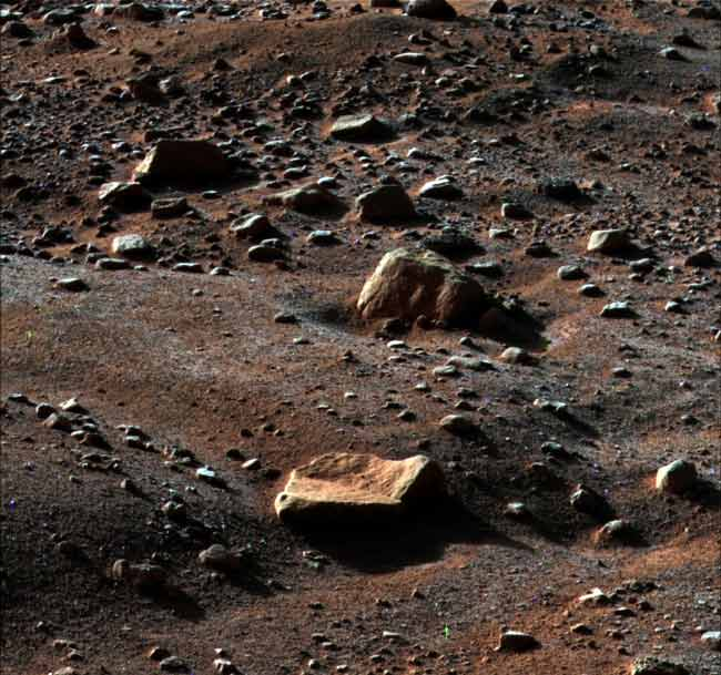 Frozen Death Looms for Phoenix Mars Lander