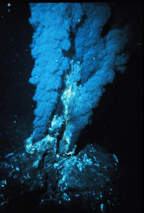 Hydrothermal vents spew hot chemicals into the surrounding environment.