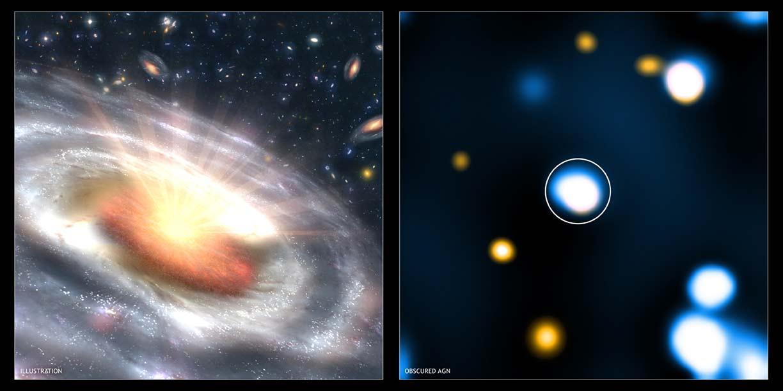 Explosions Starve Black Holes