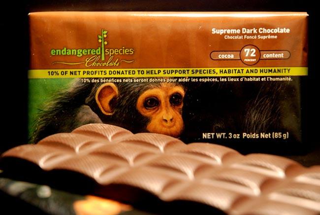 Astronaut Dessert Redefines 'Space Chimps'