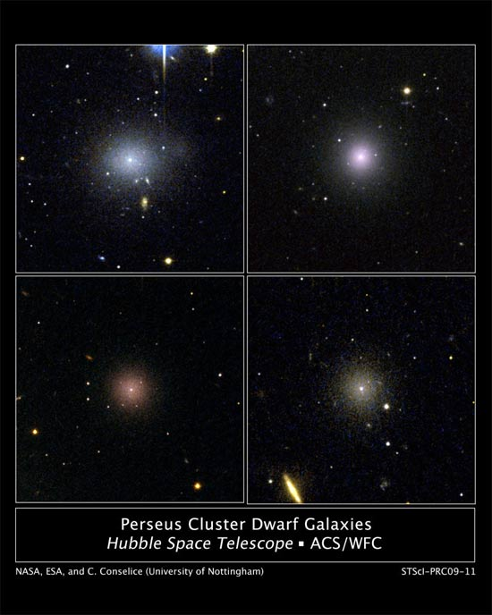 Galaxies Protected by Dark Matter