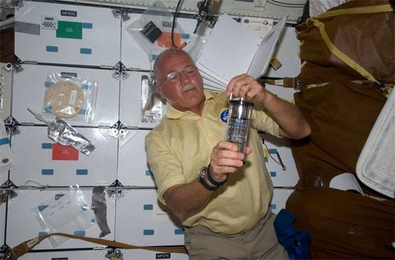 Discovery STS-119 mission specialist John Phillips with a Salmonella vaccine experiment