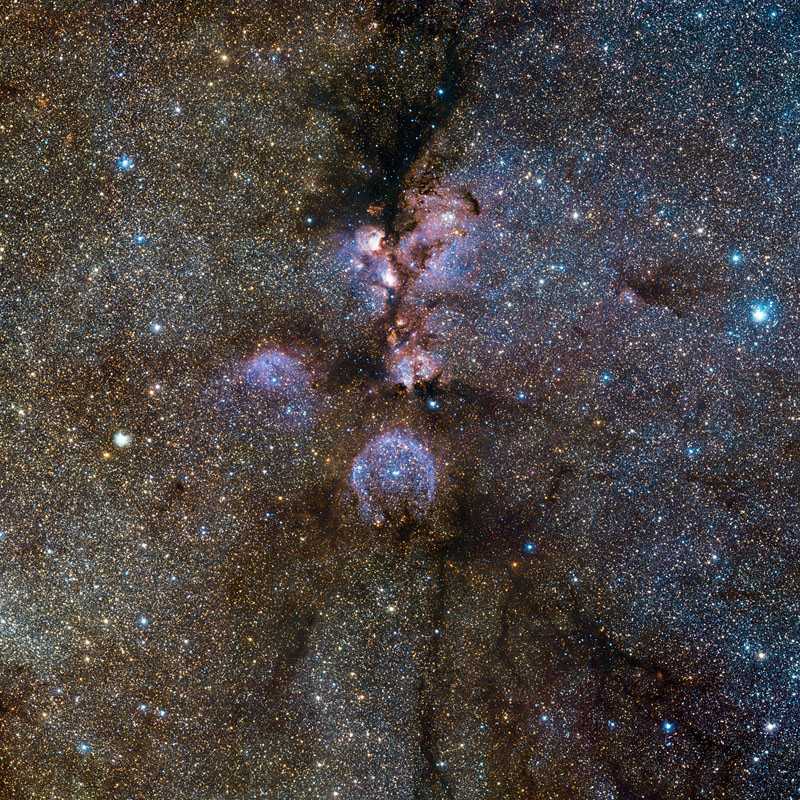 Cat's Paw Nebula: Could It Be a Black Cat?