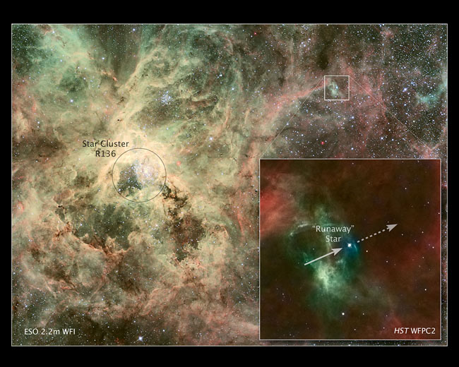 Runaway Star Flees Birthplace at Breakneck Speed