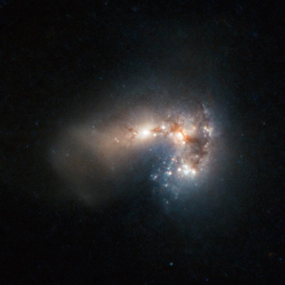 Star Birth Frenzy Revealed in New Photo