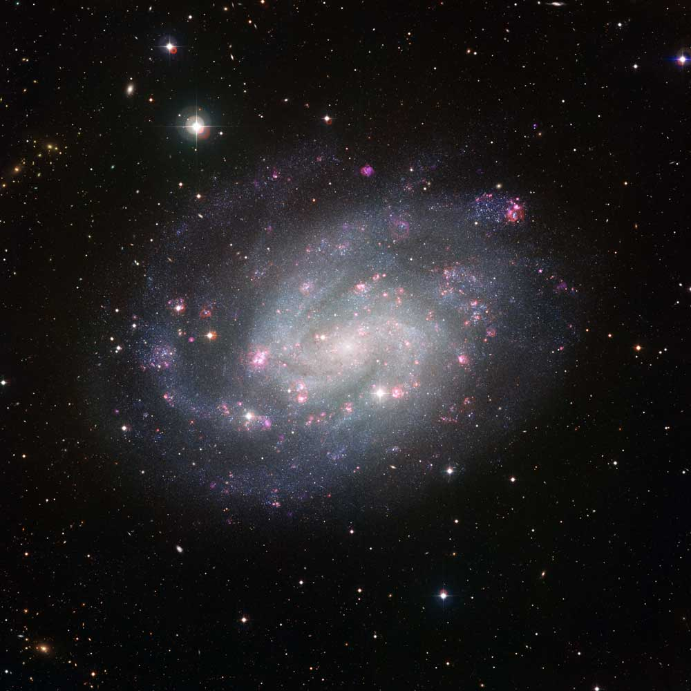 Spiral Galaxy Like Our Own Shines With Pink Clouds