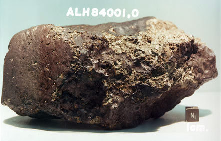 The Mars meteorite ALH84001 shown here has been a source of controversy since its discovery in 1984.