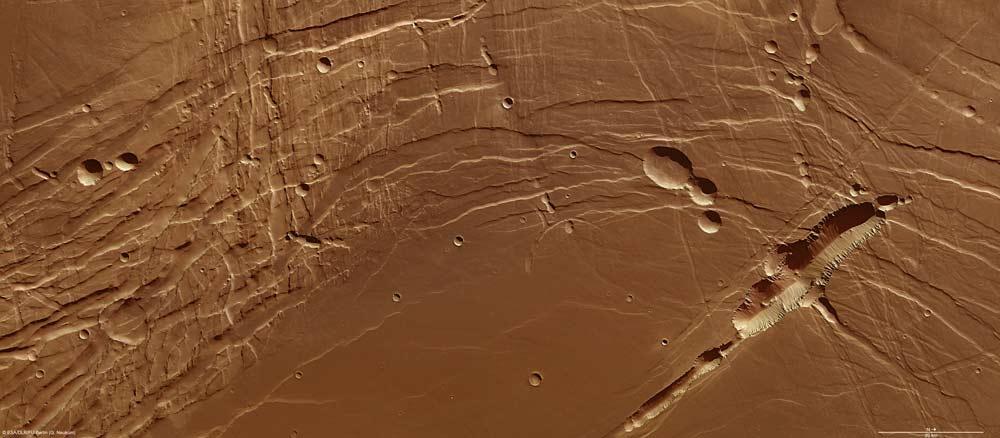 Mars' Lake Phoenicis Lacus