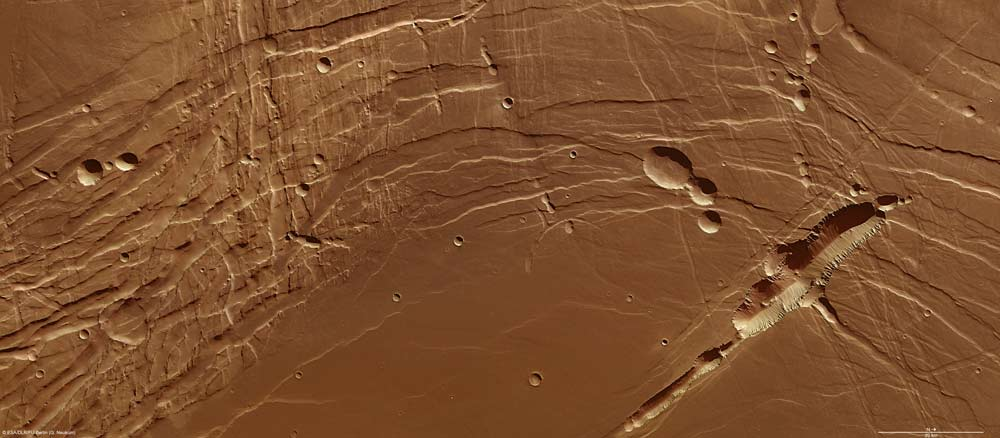 Images of Mars' Phoenix Lake Region Reveal Complex Terrain