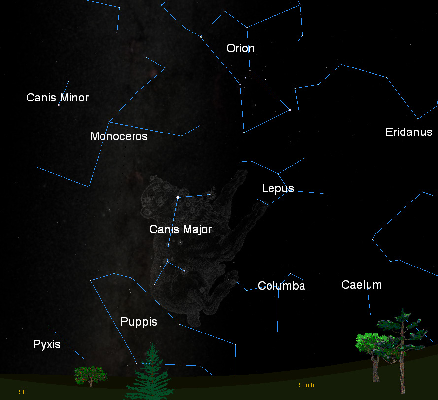 Doggie Constellations are a Skywatcher's Best Friends