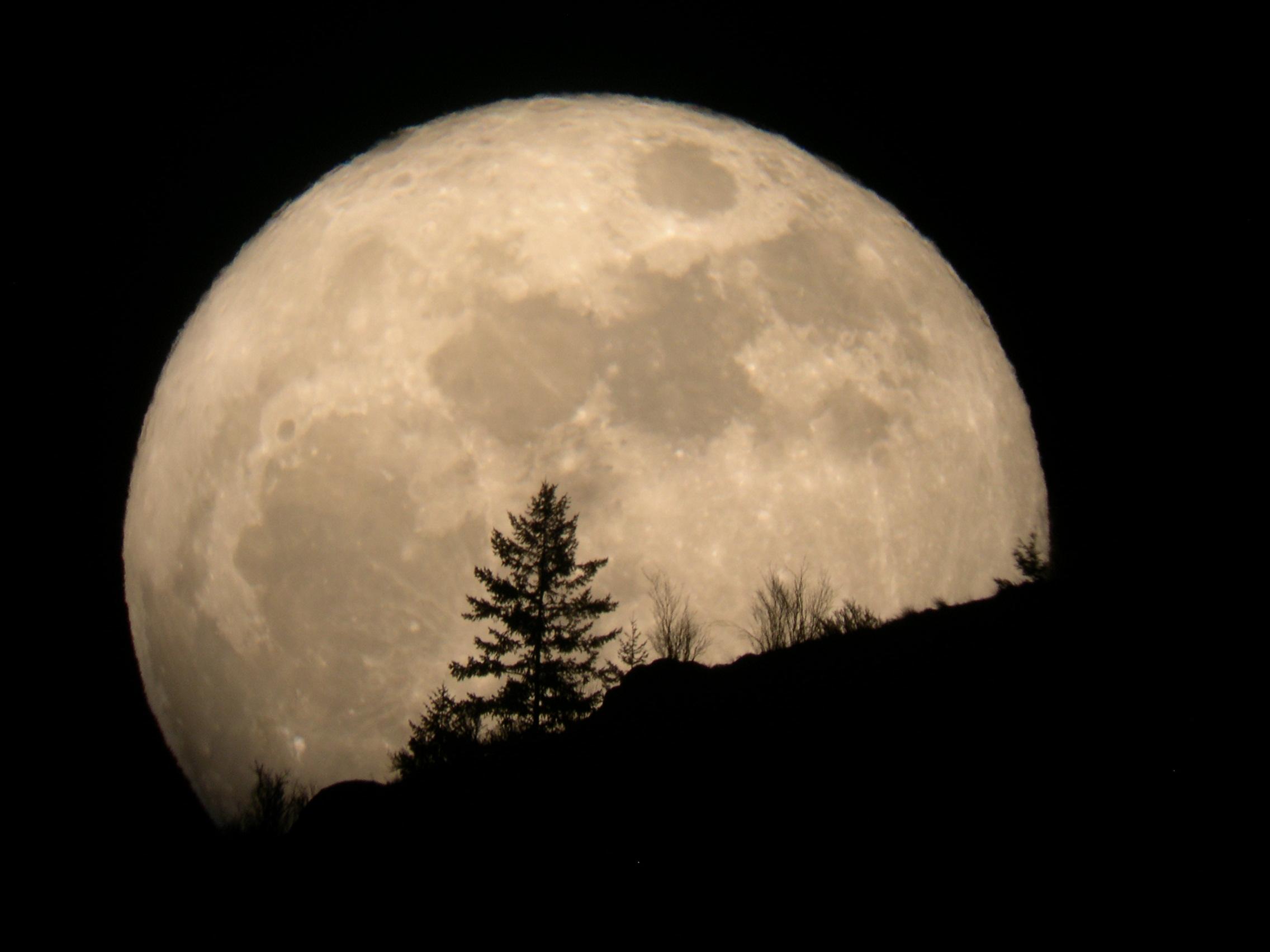 Earth's Sister Moons
