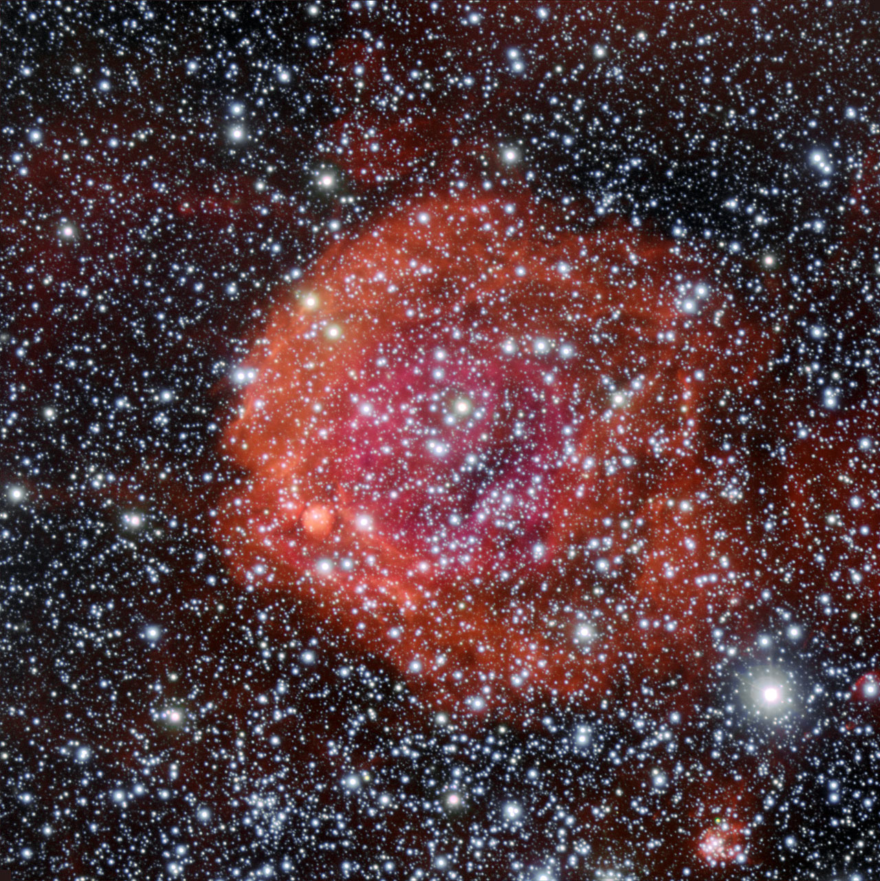 Cosmic Rose Blooms in Star Cluster Photo