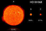Artist's impression comparing the approximate sizes and colors of the stars in the triple system HD 181068.