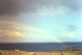 Easter Island Rainbow, April 4, 1986.