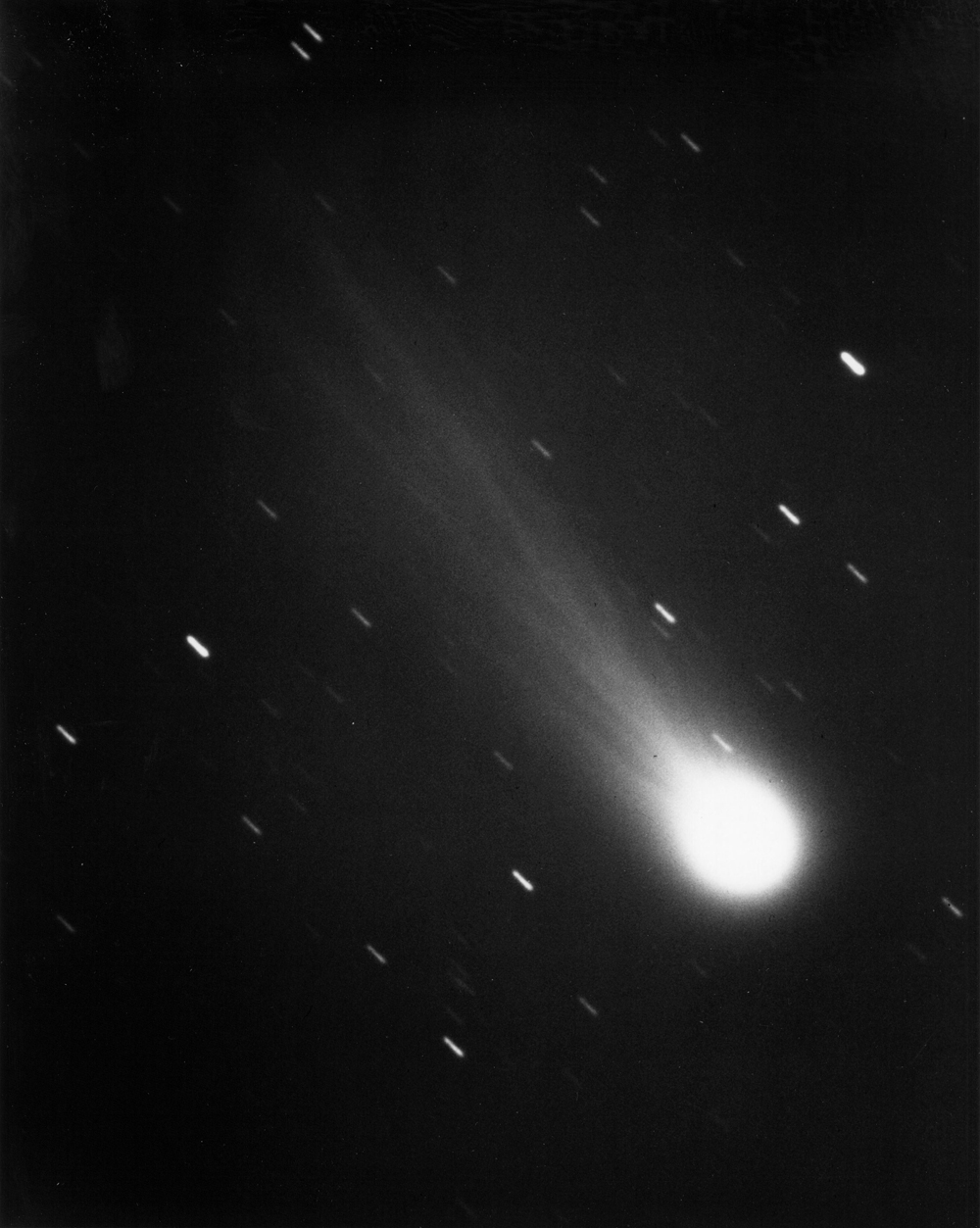 This photograph of Halley's Comet was taken January 13,1986, by James W. Young, resident astronomer of JPL's Table Mountain Observatory in the San Bernardino Mountains, using the 24-inch reflective telescope. <br><br>Streaks caused by the exposure time ar