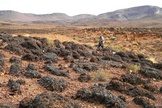 Janet Siefert walks in a field of fossilized stromatolites, evidence of an ancient lagoon.