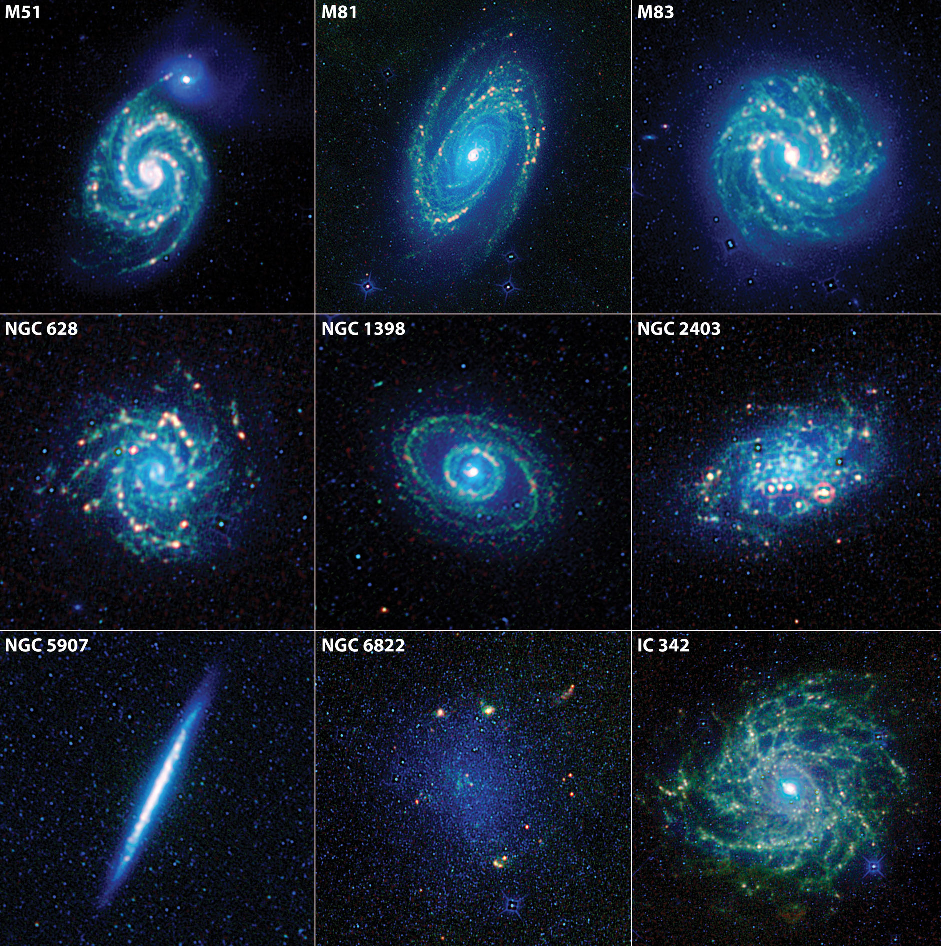 WISE Galaxy Zoo