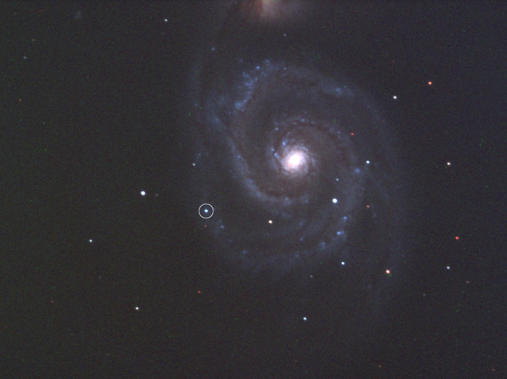 New Supernova in Galaxy M51
