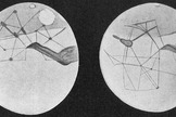 Martian canals as depicted by Percival Lowell.