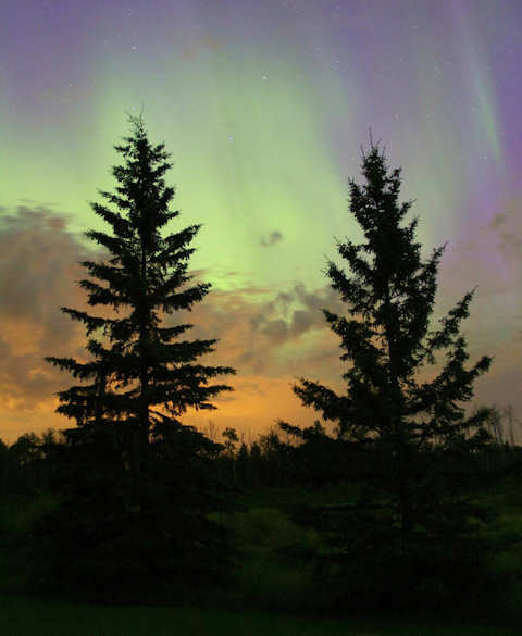 Aurora over Edmonton, Alberta, Canada, August 2011