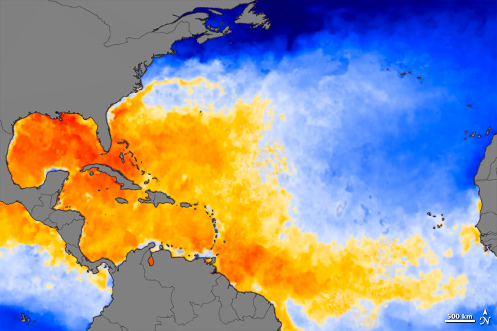 Warm Atlantic Water for Hurricane Irene