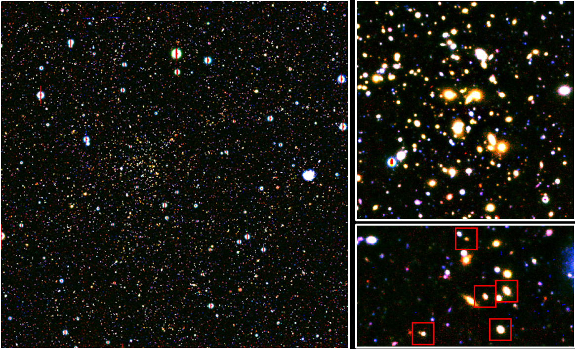 Red-burning Galaxies Give You So Much More