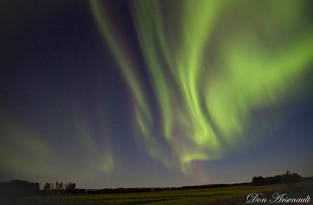 Shimmering Auroras Over Northern Alberta