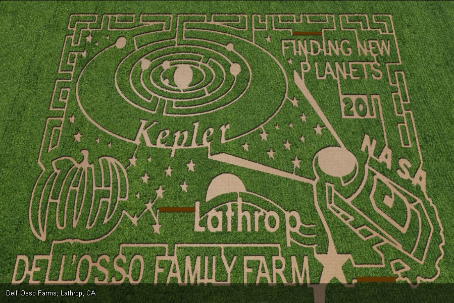 Corn Maze at Dell'Osso Family Farm in Lathrop, California