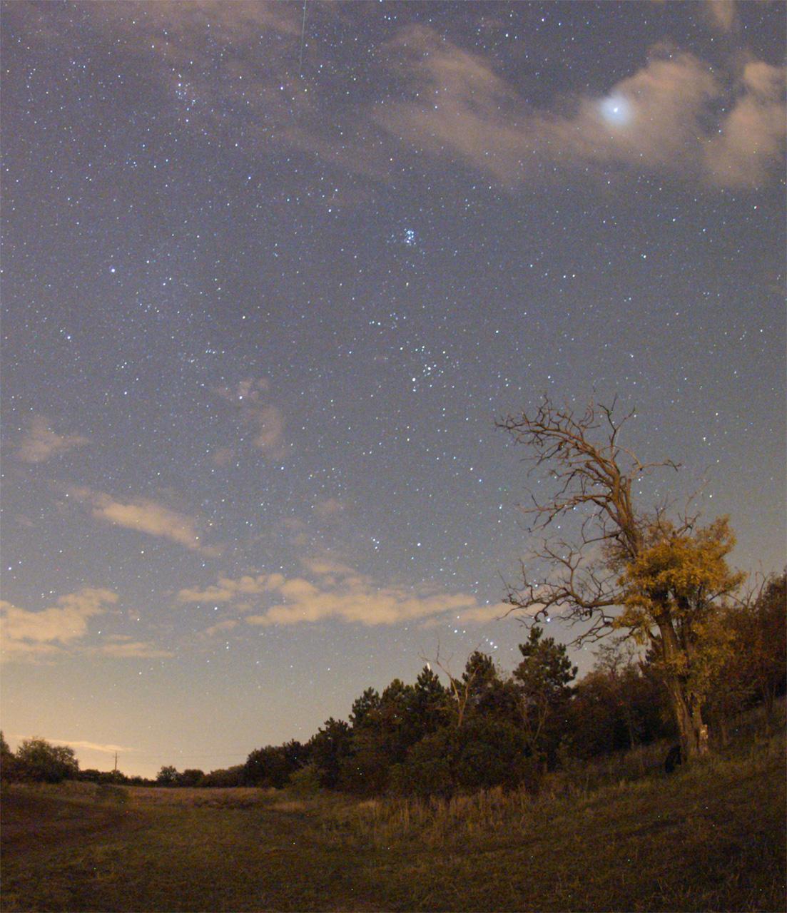 2011 Orionid Meteor Shower: Monika Landy-Gyebnar