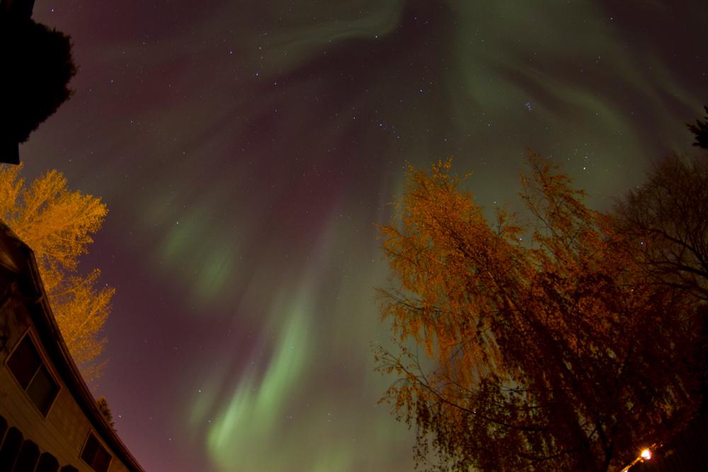 Aurora over Saskatoon, SK, Canada 4