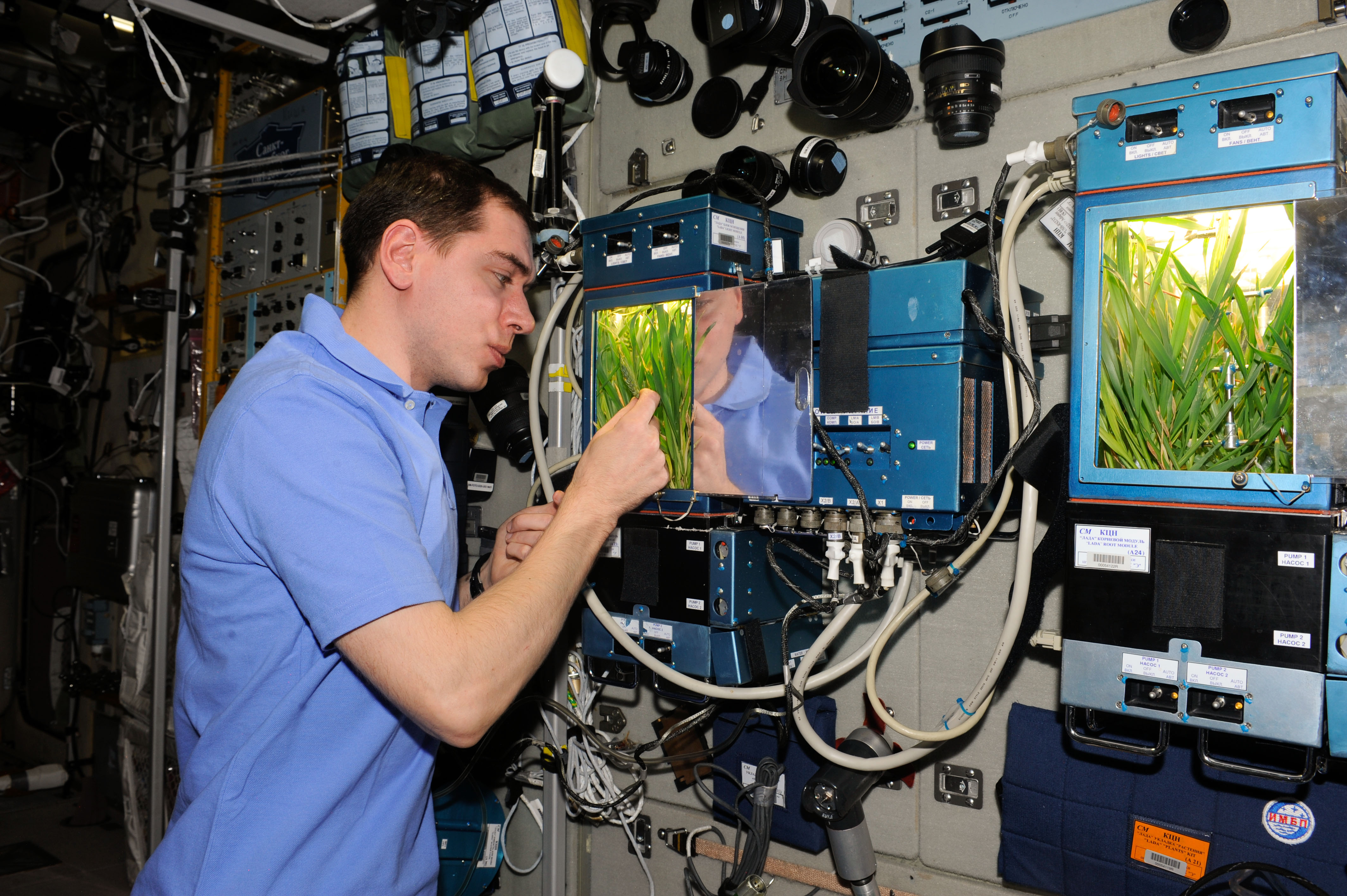 Expedition 29 Flight Engineer Monitors Growth Experiment