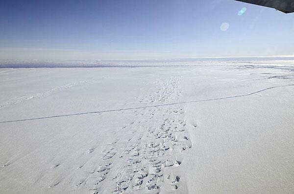 Huge Crack Discovered in Antarctic Glacier