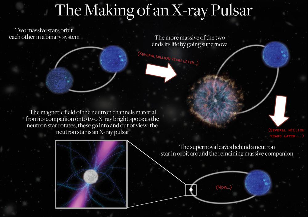 New Flavors of Super-Dense Stars Found
