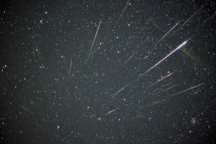 Dazzling Leonid Meteors from November 2001