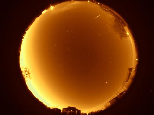 2011 Leonid Meteor Shower