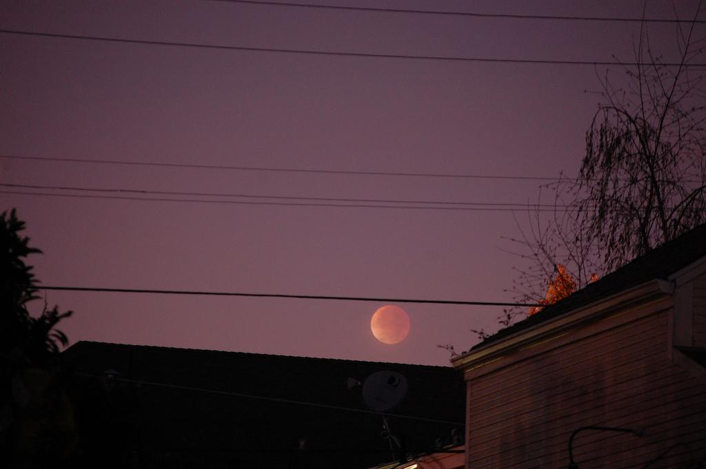 Dec. 10 Total Lunar Eclipse by David Prosper