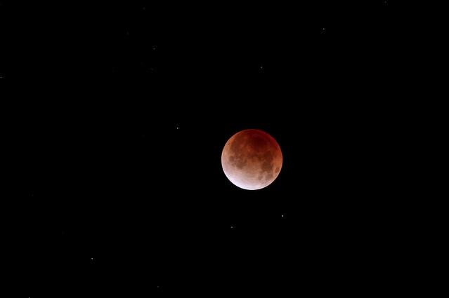 Lunar Eclipse Dec. 10 - Dan Stanyer