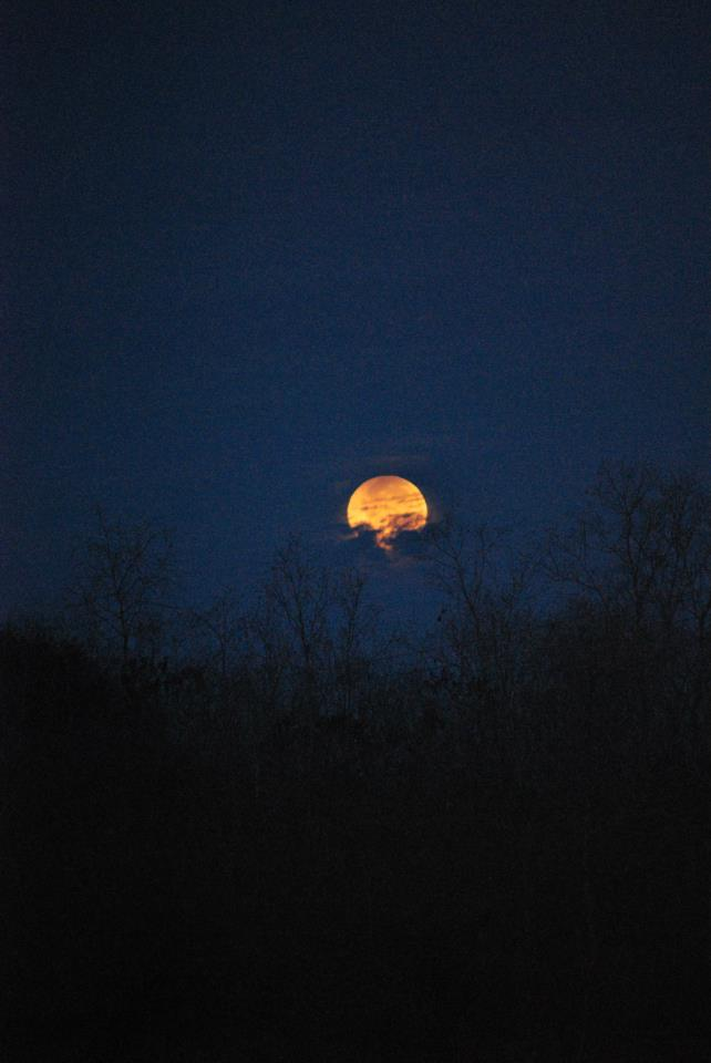 Lunar Eclipse Dec. 10 - Kyle Roberts