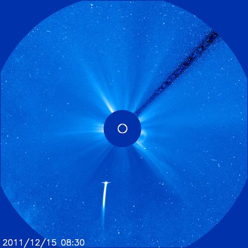 Comet Lovejoy in SOHO Satellite's Sights