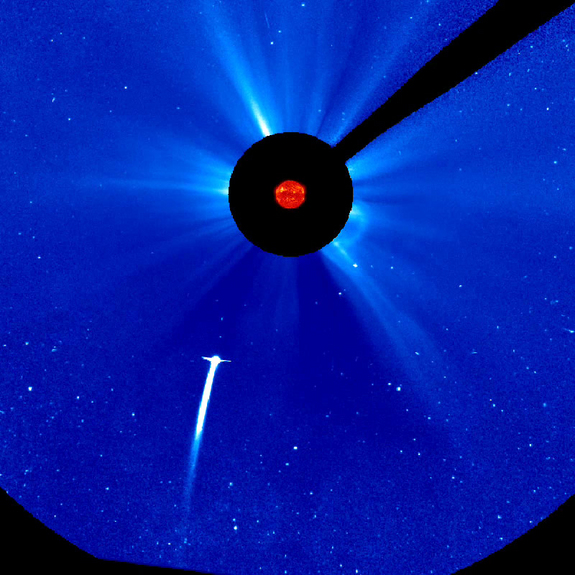 SoHo and STEREO spacecraft continue to watch Comet Lovejoy as it moves closer to the Sun and brightens. This still shows the comet headed towards the Sun, December 15, 2011.