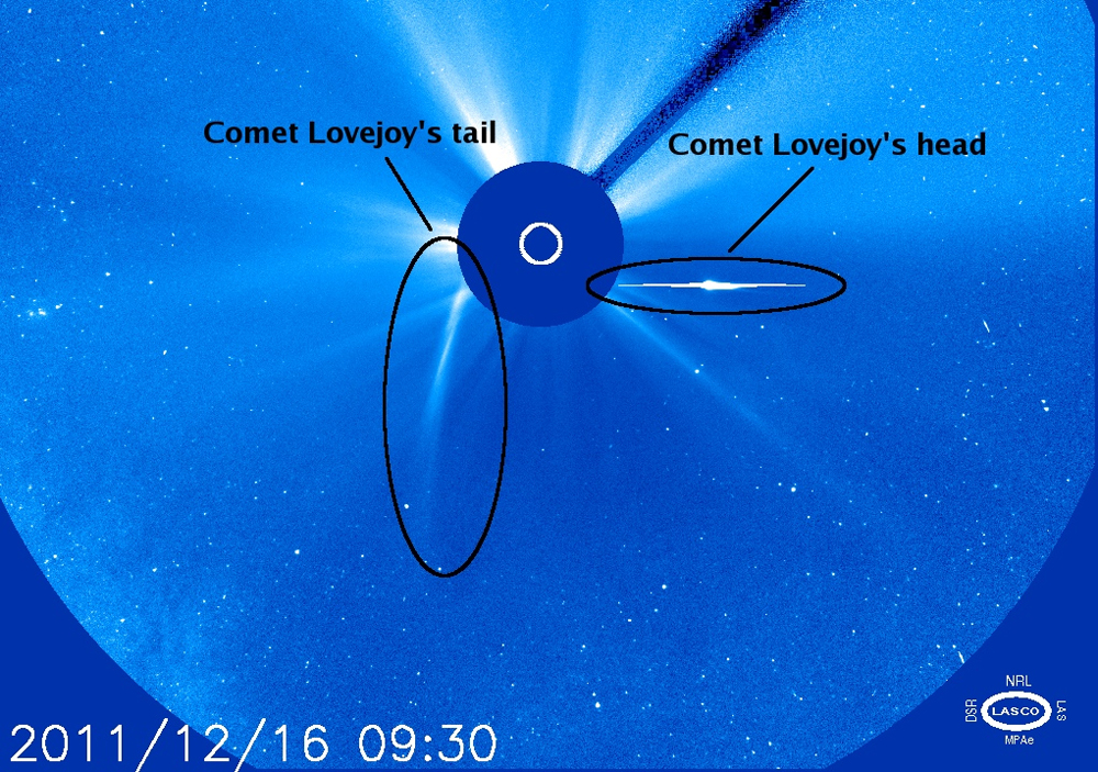 Head and Tail of Comet Lovejoy After It Survived the Sun