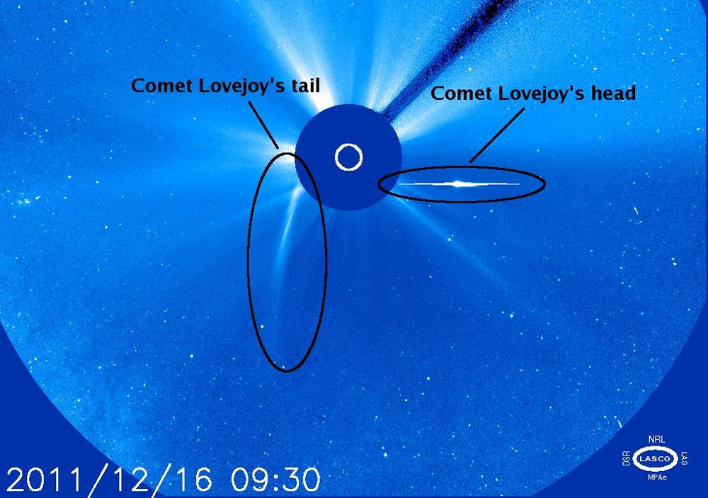 Death-Defying Comet: Photos of Comet Lovejoy's Dive Through Sun
